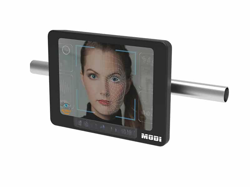 FaceBridge for biometric facial recognition